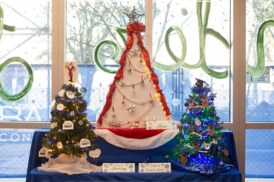 2019_1213-ChristmasTrees-KB-9295