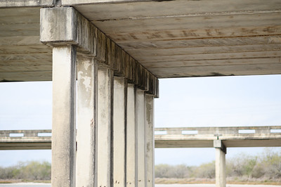 Traces of bats indicate that they have taken residence underneath the overpass at highway 77 and Salado Creek.