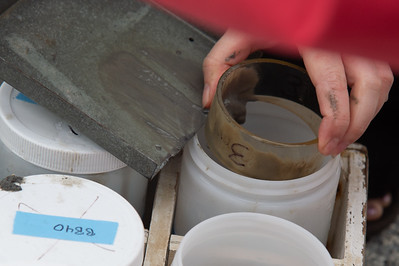 A 3cm sediment sample is stored away for further lab processing.