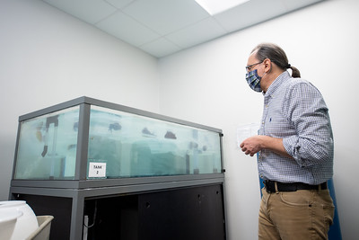 Dr. Riccardo Mozzachiodi explains how the enclosures are to be held at the proper temperature for the sea slugs.