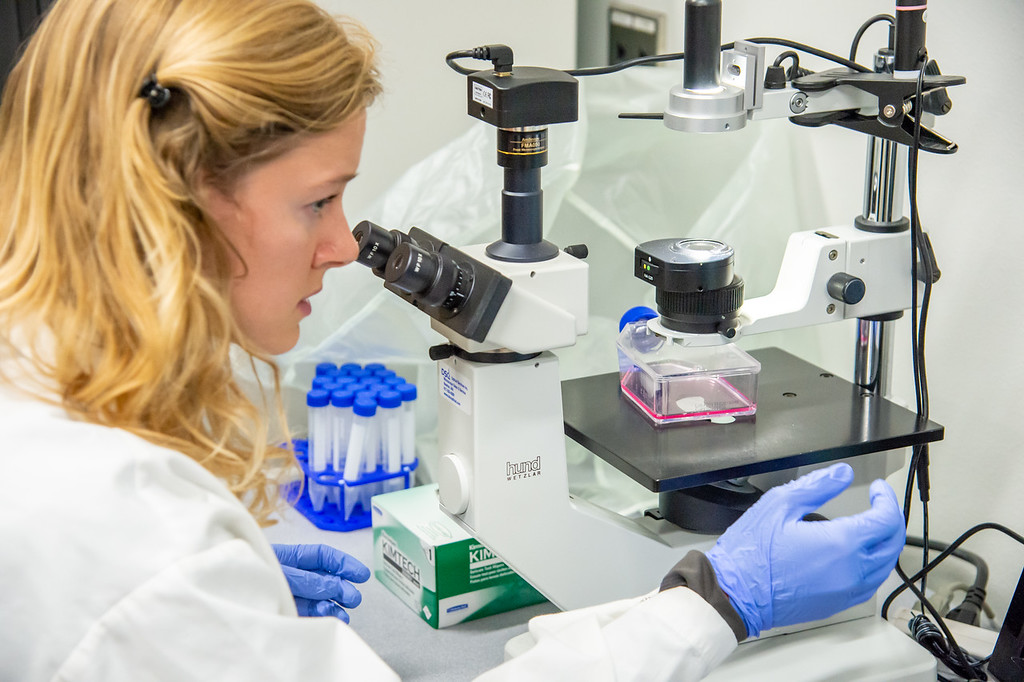 20210910_NSF_Grant-Dr Wei_XU-Biomedical_Science-MM-1130