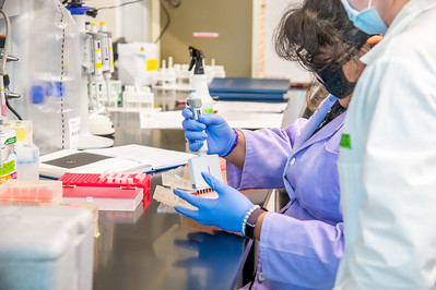 20210910_NSF_Grant-Dr Wei_XU-Biomedical_Science-MM-0898