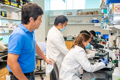 20210910_NSF_Grant-Dr Wei_XU-Biomedical_Science-MM-1036