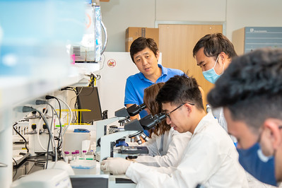 20210910_NSF_Grant-Dr Wei_XU-Biomedical_Science-MM-1007