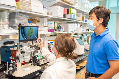 20210910_NSF_Grant-Dr Wei_XU-Biomedical_Science-MM-0938