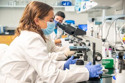 20210910_NSF_Grant-Dr Wei_XU-Biomedical_Science-MM-1034