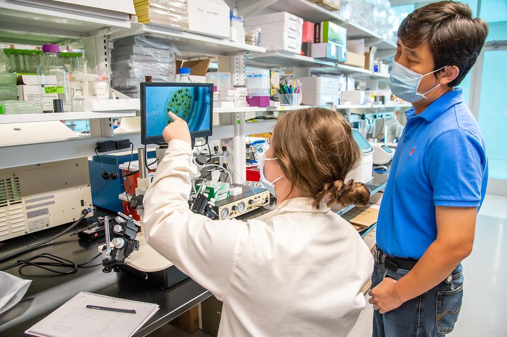 20210910_NSF_Grant-Dr Wei_XU-Biomedical_Science-MM-0958