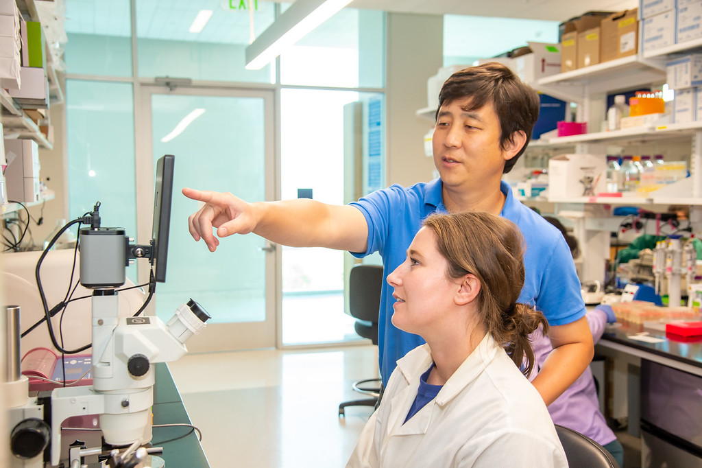 20210910_NSF_Grant-Dr Wei_XU-Biomedical_Science-MM-0982