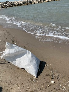 Keep the ocean plastic free