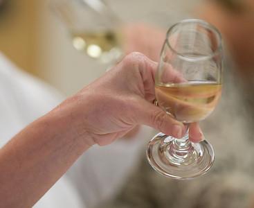2008_wine_class-1082