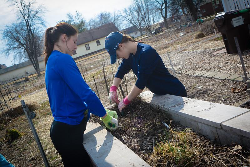 Community Garden Service Day_gibbons-5548