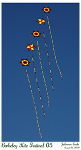 Photos from the 2010 Berkeley Kite Festival.  The two-day event in Cesar Chavez Park at Berkeley's Marina was put on by the Bay Area Sport Kite League, with one day of competition and one day of public exhibition.  Berkeley, CA  01 August 2010