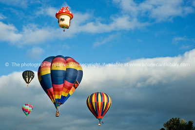 Flying high, group of hot air balloons, Balloons over Waikato, New Zealand, 2010.