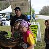 <b>Alligator Encounter</b>  Everglades Day, February 11, 2012
