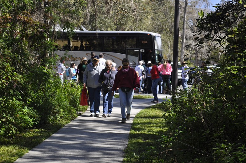 <b>Arriving Guests</b> Everglades Day, February 14, 2015 <i>- Anthony Lang</i>
