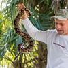 Everglades Python Hunter Edward Mercer with Ball Python