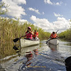 <b>Canoe Trip into Refuge Interior</b> Everglades Day, February 9, 2013 <i>- Tony Lang</i>