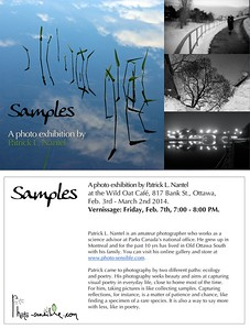 Samples. A solo photo exhibition at the Wild Oat Café, Feb. 2014