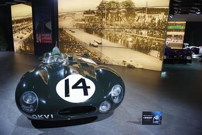 Jaguar D 1954