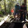 F-Troop Bridge Building @ Hillsborough River State Park <br /> Photo Credit: Tom Hammond