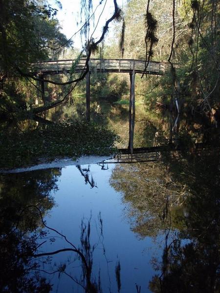 F-Troop Bridge Building @ Hillsborough River State Park <br /> Photo Credit: Tom Hammond
