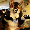 Furry Connection North 2013