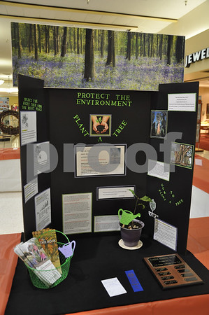 """This educational """"Protect the Environment"""" display by Bev Longnecker won the Past President's award"""