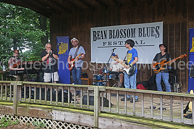 Bean Blossom Blues Fest 2016