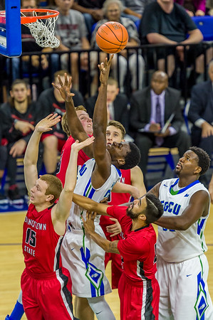 FGCU v Youngstown 11/21/2015