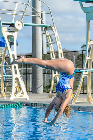 FGCU Swimming & Diving 01/07/2013