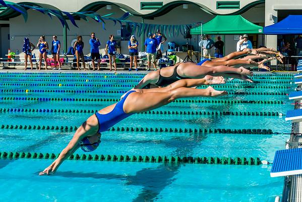 FGCU Swim/Dive