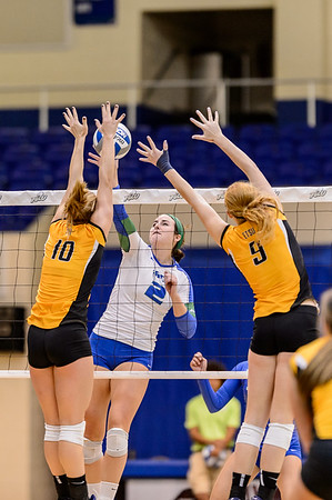 FGCU vs ETSU Women's Volleyball 11/01/2013