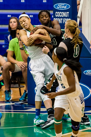 FGCU vs USC Upstate 01/11/2014