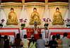 FGS Dong Zen Temple CNY Lantern & Flora Festival 2008