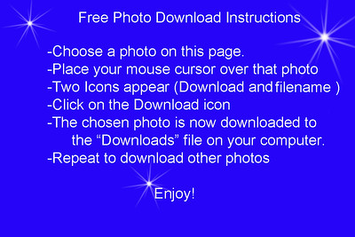Free Downloads Instructions 2