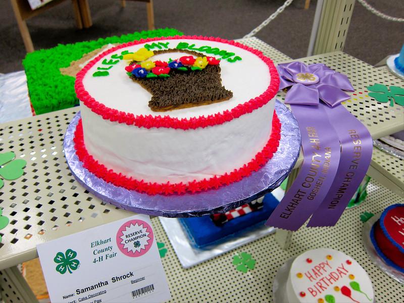 Cake Decorating<br /> Elkhart County 4H Fair 2012