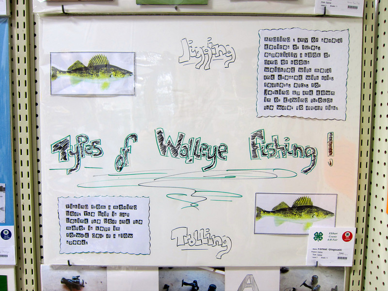 Nature - Walleye Fish<br /> Elkhart County 4H Fair 2012