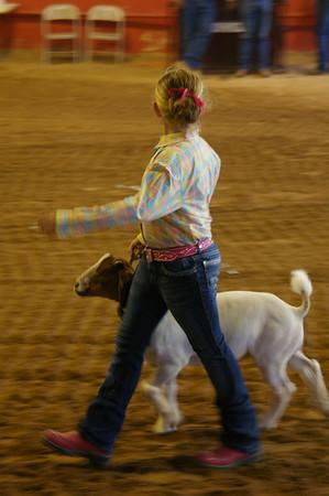 Eastern NM State Fair 2007