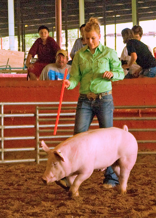Chaves County Fair