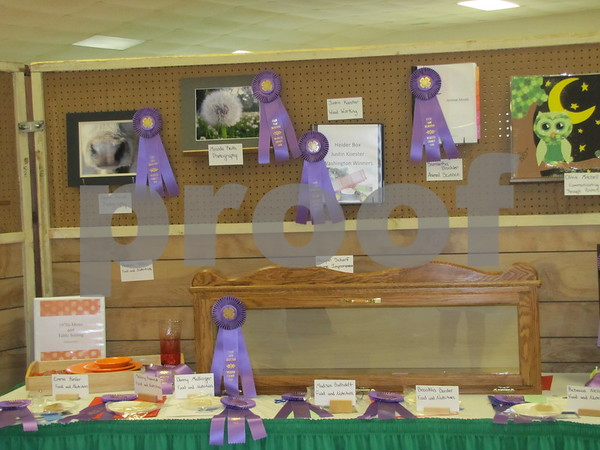 4-H Projects headed for the state fair.