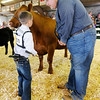 Don Knight | The Herald Bulletin<br /> Jacob Shuter talks to judge Chad Martin during the showmanship competition at the 4-H Fair Beef Show on Tuesday.