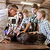 John P. Cleary | The Herald Bulletin<br /> 4-H Poultry Show judge Ronn Paterson, left, leans in to hear Syler Hartwell, 11, right, as he asks him questions during judging of the commercial turkey class at the Madison County 4-H Fair Monday.