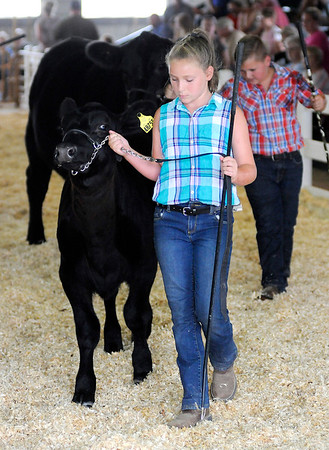 Don Knight   The Herald Bulletin<br /> At the Madison County 4-H Fair on Tuesday.