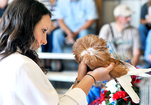 John P. Cleary | The Herald Bulletin<br /> First year judge, Emma Noble, 19, takes a close look as she inspects Emma Harvey's Jacobin breed pigeon during judging at the 4-H Pigeon Show Wednesday at the Madison County 4-H Fair.