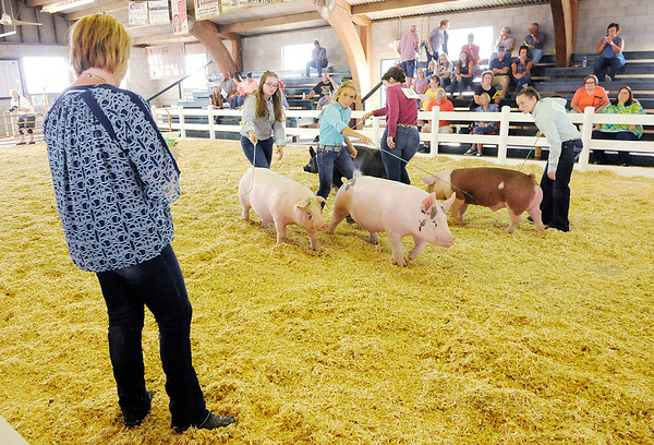 Don Knight | The Herald Bulletin<br /> The senior showman winners from each species compete in the supreme showmanship contest at the Madison County 4-H Fair on Thursday. This year the four competitors were girls.