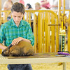 Don Knight | The Herald Bulletin<br /> Madison County 4-H Fair on Thursday.