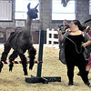 John P. Cleary | The Herald Bulletin<br /> Friday at the Madison County 4-H Fair.