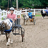 John P. Cleary | The Herald Bulletin<br /> Jessica Van Ness, foreground, Emily Van Ness, and Brianna Lane circle the ring as the compete in the 56 inches and under Pleasure Driving class at the 4-H Horse & Pony Show Friday.