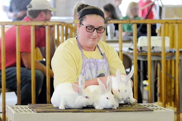 Don Knight | The Herald Bulletin<br /> Erin Cass auctions her rabbits during the 4-H Livestock Auction on Thursday. Northgate True Value Hardware had the winning bid of $100.