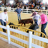 Don Knight | The Herald Bulletin<br /> Thursday at the 4-H Fair.